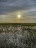 Early Morning in the Everglades